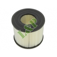 Briggs & Stratton Air Filter 393957