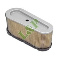 Briggs & Stratton Air Filter 496894