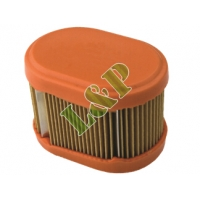 Briggs & Stratton Air Filter 790166 698867