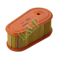 Briggs & Stratton Air Filter 796254 795066